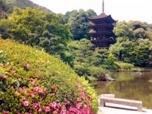 2014瑠璃光寺